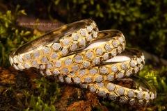 عکاسی تبلیغاتی طلا و جواهرات