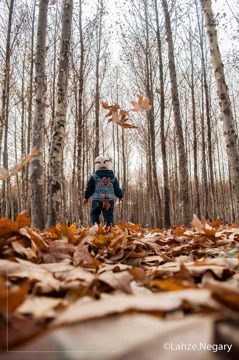 عکاسی از فضای پاییزی همراه با سوژه